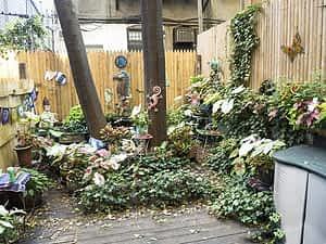 Joan's secret garden
